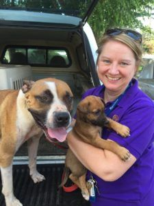 Rosanne Short and rescue dogs