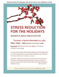 Stress Reduction for the Holidays: Mindfulness Meditation Flyer